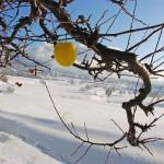 inverno in val di non